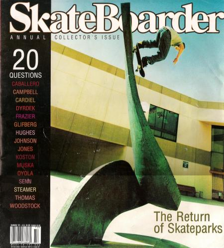 bam_skateboarder