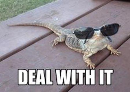 lizard-deal